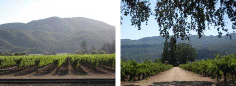 Two images of Napa Valley country side - vineyards and mountains in the background