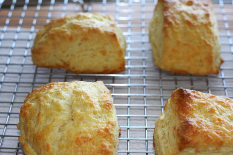 Another photo of baked buttermilk cheddar biscuits on a cooling rack over a paper towel