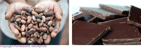 Image 1: Close up stack of dark chocolate squares; Image 2: Image of cocoa farmer's two hands cupped together holding fermented cocoa beans