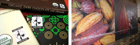 Image 1: Fair Trade Organic chocolate bars in wrappers with close up of Fair Trade logo; Image 2: Photo of wall with a photo of cocoa beans on it
